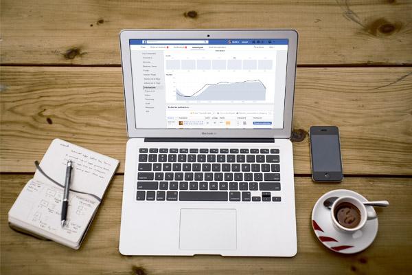 strategie community management - agence canefora
