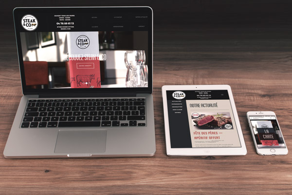 Responsive site web - Agence Canefora