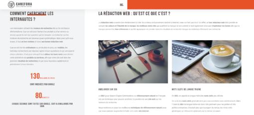Référencement naturel - SEO - Metatitle - Images - textes - Métadescription - Blog Cafeiné - Articles - Agence Canefora