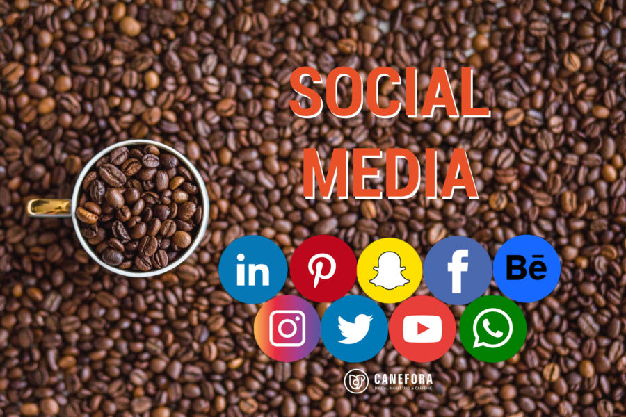 Social Media - Reseaux sociaux - Pinterest - Facebook - Youtube - Snachat - Twitter - Instagram - Agence de communication web - Canefora
