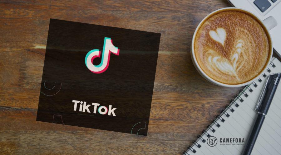 Social Media - TikTok - réseau social - nouveautés - vidéos - Canefora - Agence de communication web Annecy