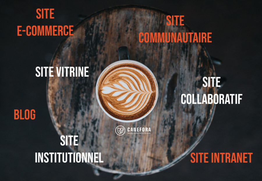 Site web - typologie site internet - blog - e-commerce - site vitrine - site institutionnel - Agence de communication web - Canefora